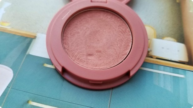 Project Pan February (6)